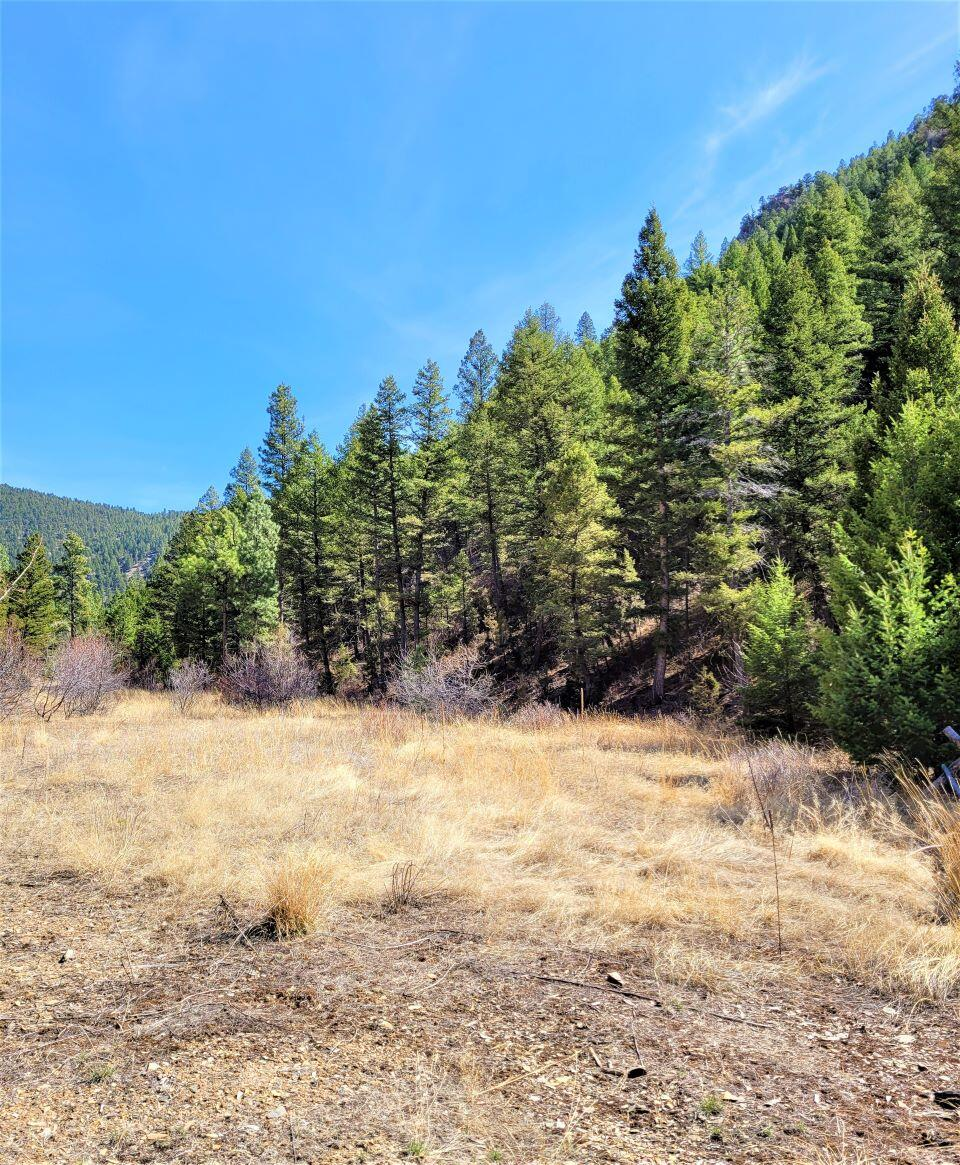 Have you been looking for that vacant lot around York? Get ready to build that dream home! Not only is this lot in desirable York, Montana, but it even has Forest Service bordering 2 sides of this beautiful property! No HOA, no covenants. It's vacant land and ready for your plans. Call Kody Kottas at 406-475-2358, or your real estate professional.