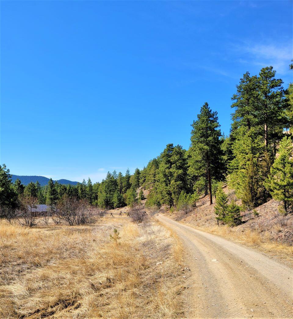 Tbd Black Bear Road