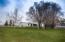 Large mature trees shade the yard