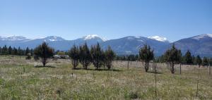 192 8 Mile Creek Road, Florence, MT 59833