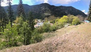 Alberton, MT 59820