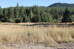 126 Crystal View Court, Lakeside, MT 59922