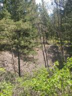 Nhn West Mountain Creek Road, Alberton, MT 59820