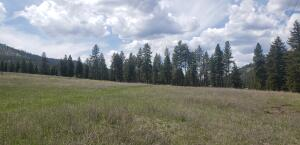 Nhn Thayer Road, Lolo, MT 59847