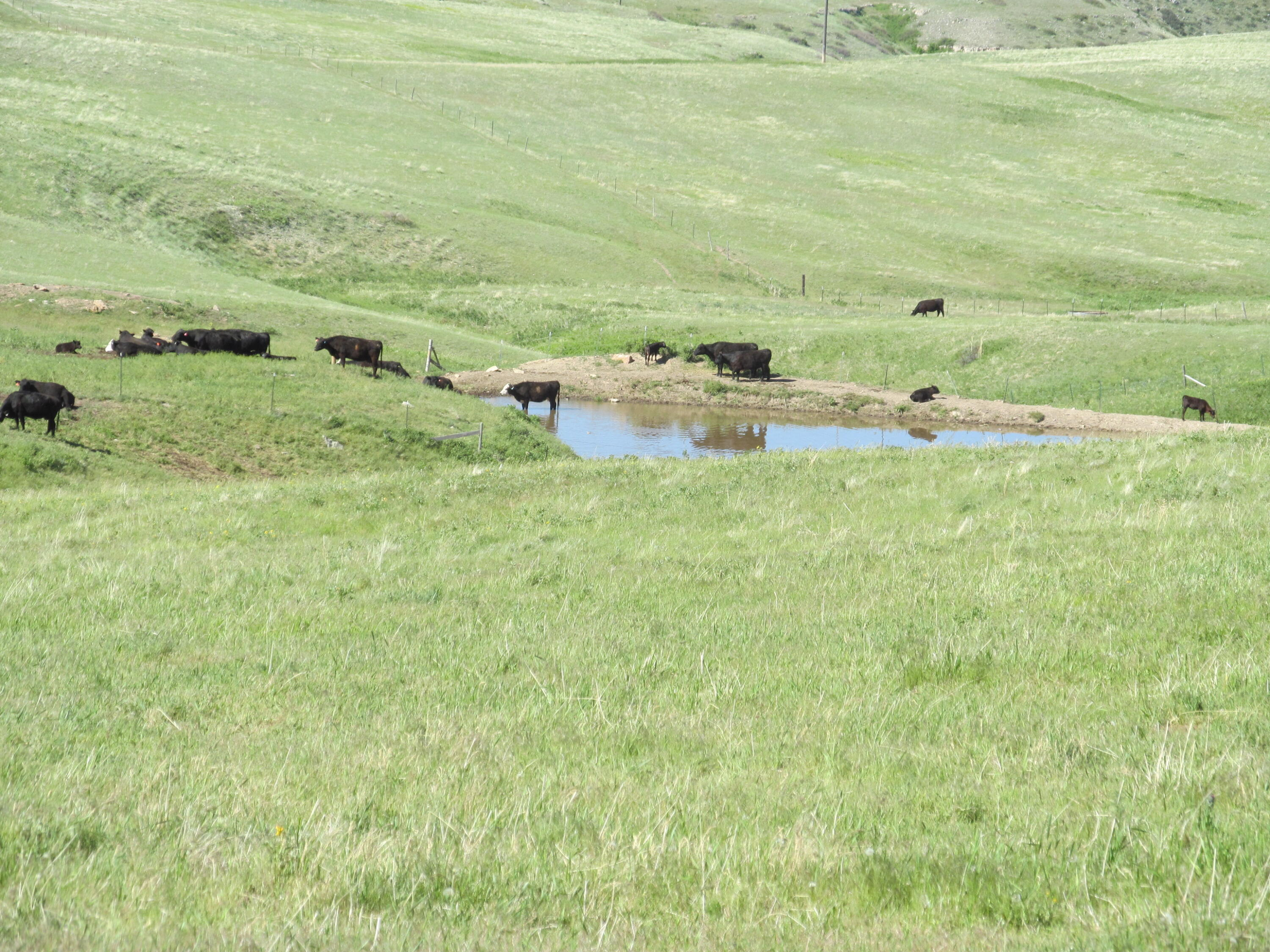17 Cottonwood Coulee Road, Stockett, MT 59480