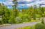 136 Berry Lane, Whitefish, MT 59937