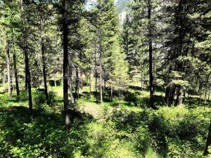 303 Iron Mountain Road, Superior, MT 59872