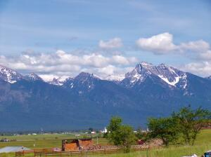 View of Mission Mountains from the site (trees & hay not on property)