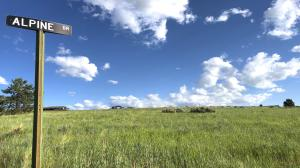 Tract 20-A Alpine Drive, Florence, MT 59833
