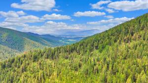 Tamarack Mountain, Missoula, MT 59808
