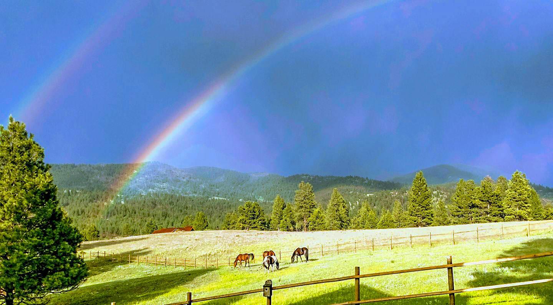 5 Alpine Valley Lane, Clancy, MT 59634