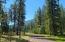 157 Bobcat Lane, Alberton, MT 59820