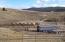 425 Two Bit Lane, Butte, MT 59701