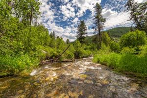 117 Twelve Mile Creek Road, Saint Regis, MT 59866