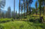 Nhn Sky Peak Road, Frenchtown, MT 59834