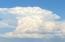 Big Summer cloud.
