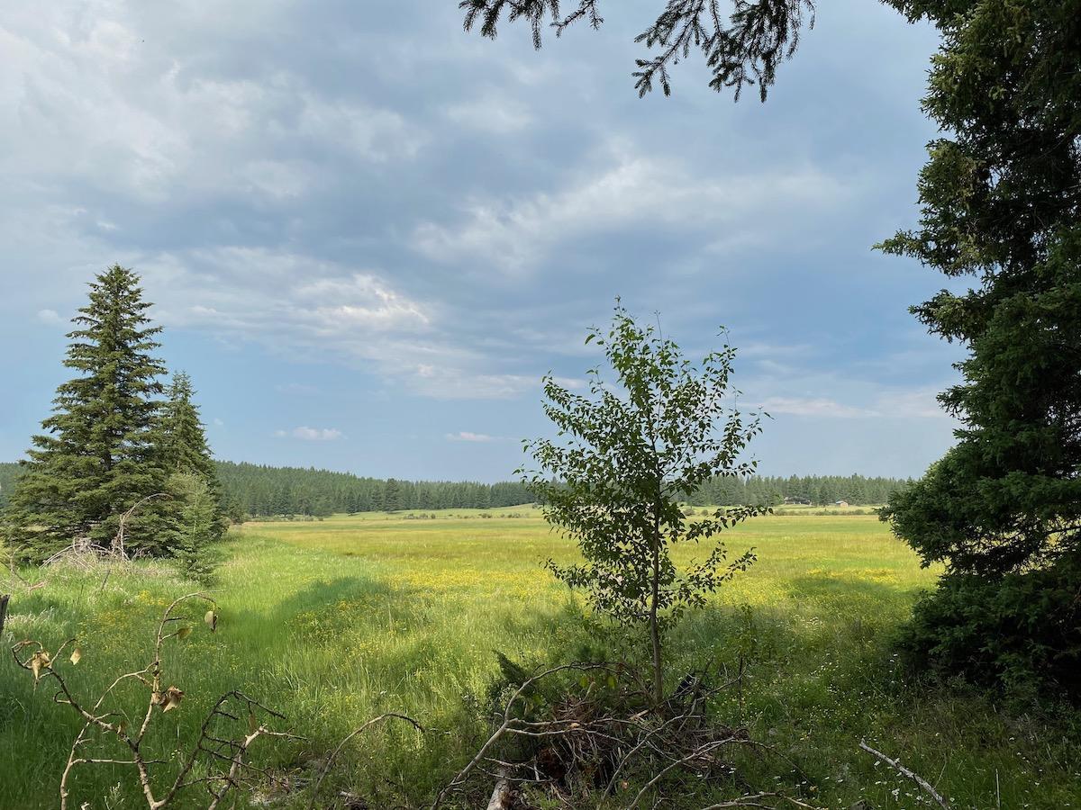 1340  Mooring Meadow Road