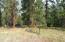 Lot 6 Reardon Lane, Alberton, MT 59820