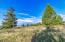 20218 Morgans Run Lane, Florence, MT 59833