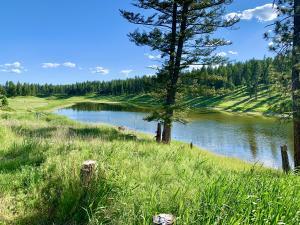 345 Lore Lake Drive, Kalispell, MT 59901