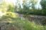 Skalkaho Creek looking east through front yard.
