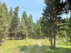 514 Seclusion Point, Seeley Lake, MT 59868