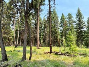 155 White Smoke Trail, Seeley Lake, MT 59868