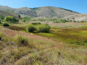 Lot 78 Outlaw Trail, Anaconda, MT 59711