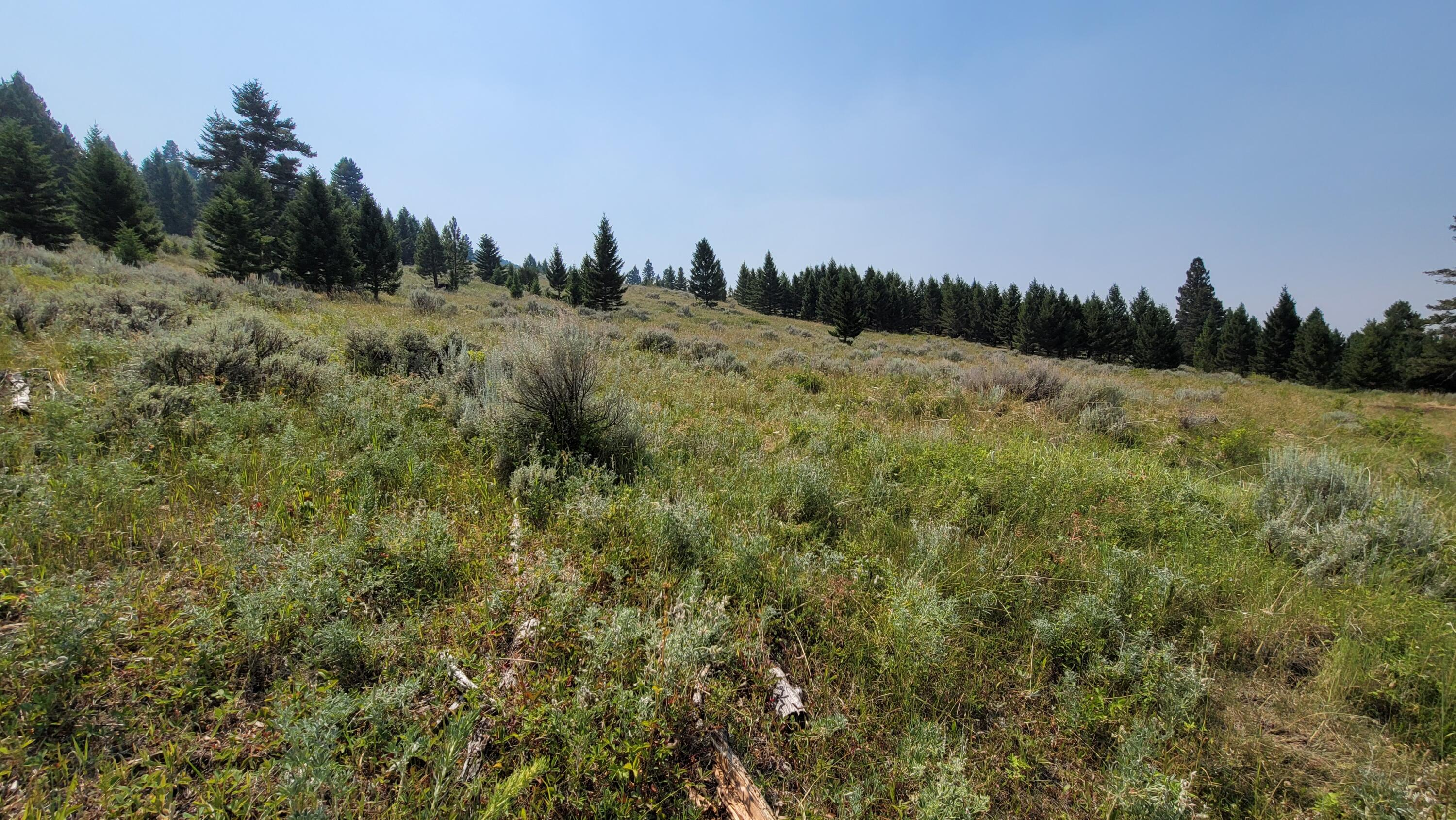 Spring Located Near Top of Lot, Private Building Sites, Open Parks and 360 Views, Good Access Roads, Some Timber, Close Access to Over 20,000 Acres of Public Land*Call Dan and Cortney at 406-439-5414, or your Real Estate Professional.