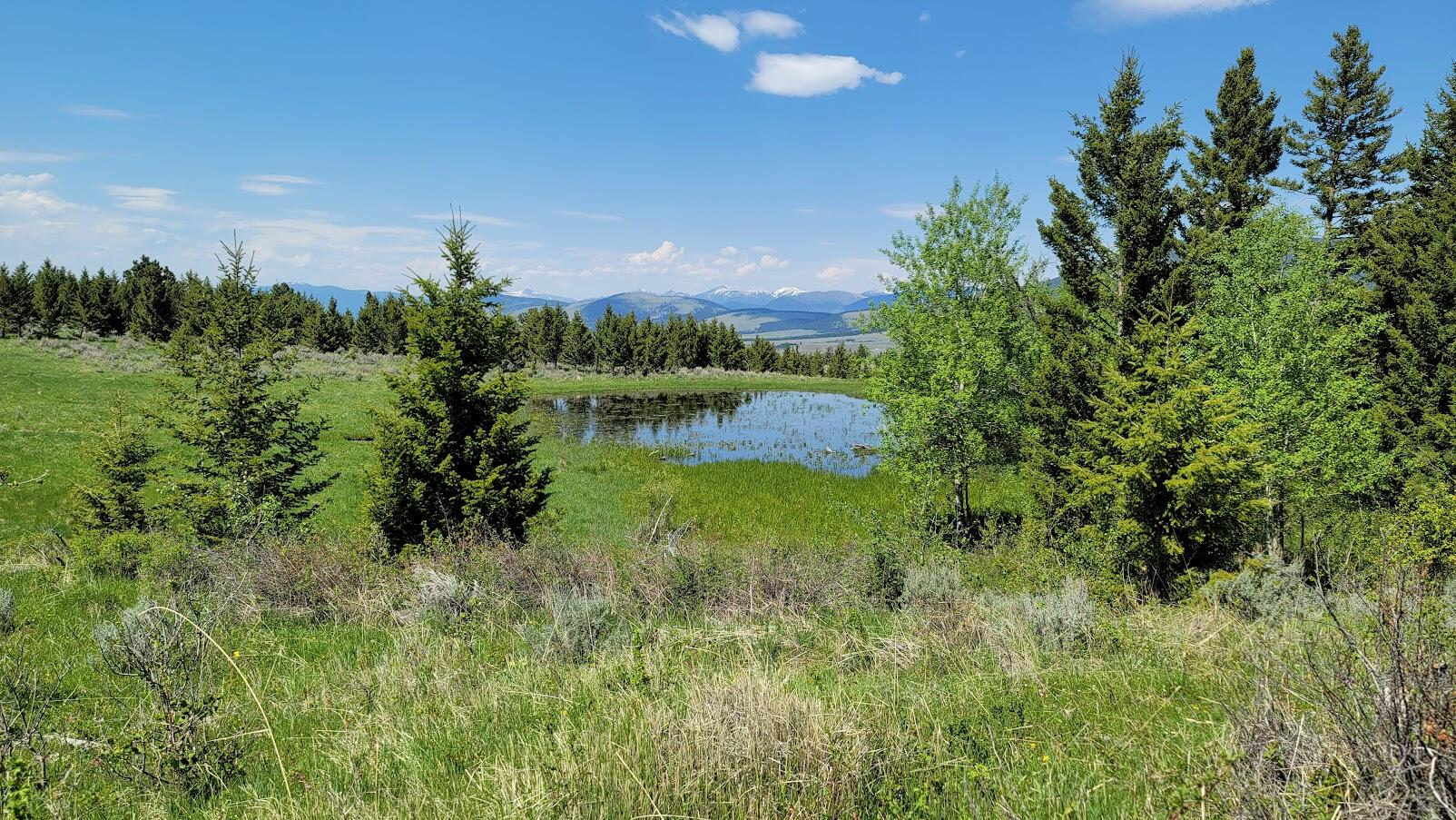 Springs, Ponds, Beautiful Views that Overlook Helmville area, Building Sites, Private, Good Access Roads, End of Road LotCall Dan & Cortney Senecal at 406-439-5414, or your real estate professional.