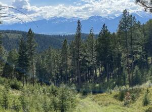 Tbd Eight Mile Creek Road, Florence, MT 59833