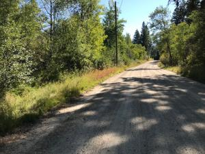 338 Bunkhouse Road, Darby, MT 59829