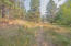 Trail through common area to the Clark Fork River