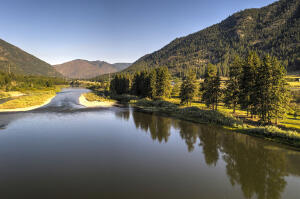 Nhn Petty Creek Road, Alberton, MT 59820