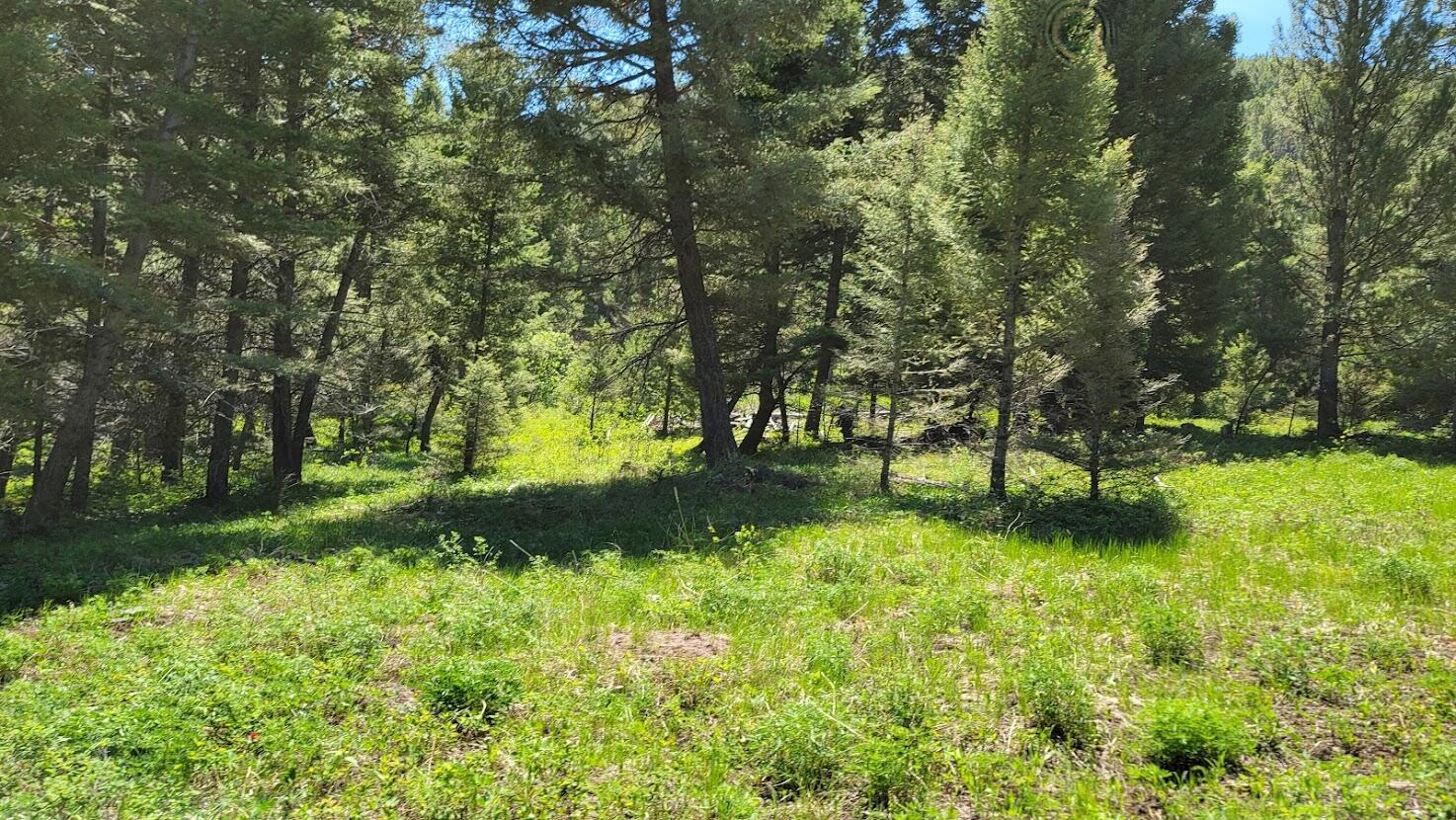 Borders over 20,000 Acres of Public Land, Timber, Views for Miles, Plentiful Wildlife (Deer, Elk, Bear, Cats), Private, Building Sites, Spring, Good Access Roads Call Dan & Cortney Senecal at 406-439-5414, or your real estate professional.