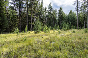 328 Whitetail Meadow Trail, Fortine, MT 59918