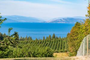 Flathead Lake Views