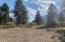 104 Alta Drive, Darby, MT 59829