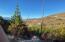 1100 Stoney Bear Lane, Darby, MT 59829