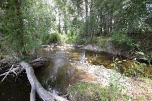 N Burnt Fork Creek