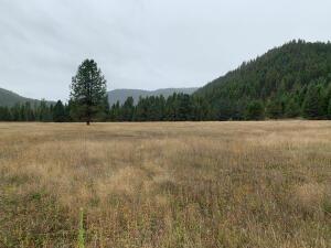 Nhn Sevenmile Creek Road, Saint Regis, MT 59866