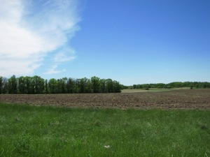 Tract F ST HWY 108, Perham, MN 56573