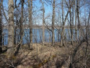 Lot 2 Co 19 Road, Ashby, MN 56309