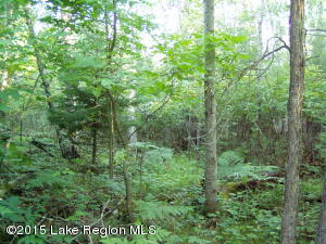 Lot 3 B-1 Falling Leaf Trail, Park Rapids, MN 56470