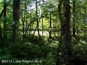 Lot 8 B-1 Falling Leaf Trail, Park Rapids, MN 56470