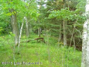 Lot 9 B-1 Falling Leaf Trail, Park Rapids, MN 56470