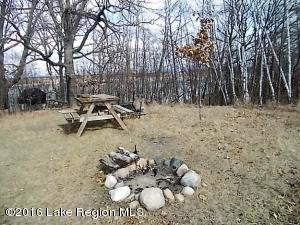 Xxx Willow Creek Drive, Henning, MN 56551