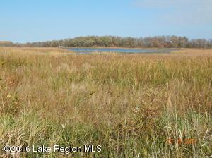 Tbd Johnson Trail, Detroit Lakes, MN 56501