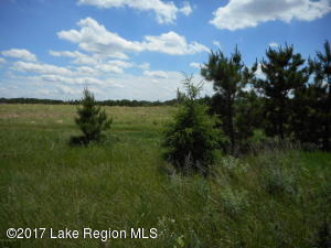 Turtle Bay Development #32, 425th Avenue, Perham, MN 56573