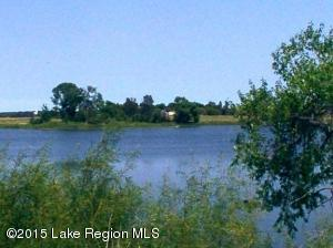 Lot Opt 1 165th Street, Clitherall, MN 56524